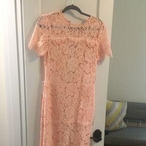 Ganni Lace Duval Dress Blush